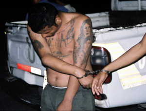 An MS-13 suspect bearing gang tattoos is handcuffed. Author FBI. Original uploader was Zero Gravity at en.wikipedia