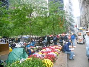 Thoughts on Occupy Wall Street
